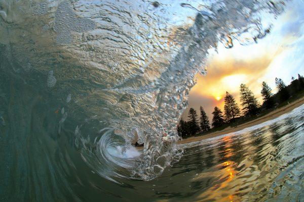 Ocean to Pine